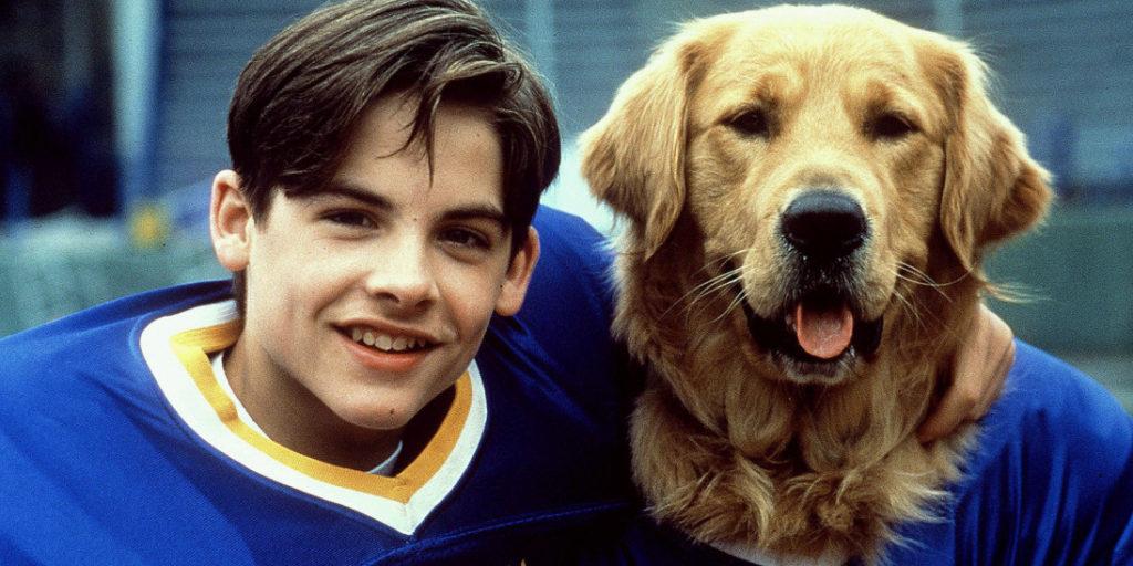 เรื่องย่อ...ภาพยนตร์สุนัขแสนรู้ที่ชื่อบัดดี้