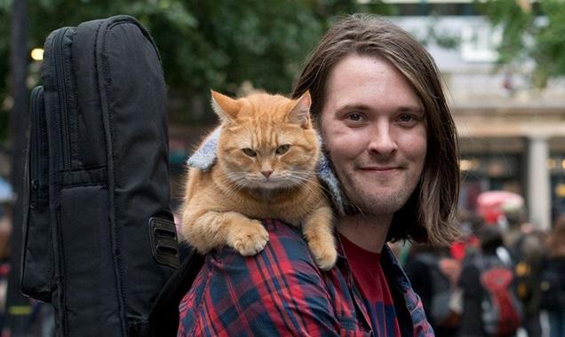 A Street Cat Named Bob เรื่องราวของนักดนตรี